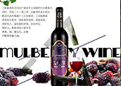 【航天城优选特供】万博官网manbetxapp下载紫最新万博体育app官网下载酒750ml/瓶